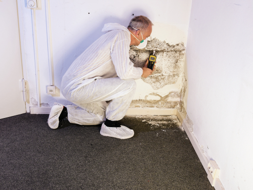 Clint Miller Exterminating Waterproofing Protection