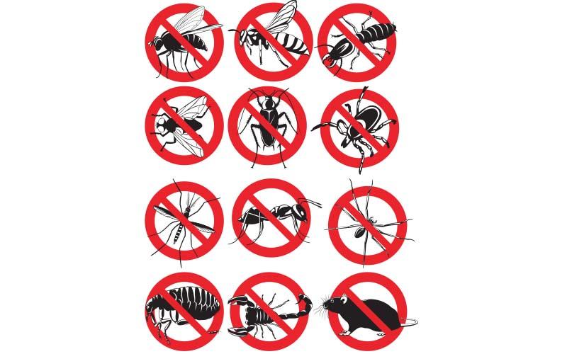 Pest_Control_Services