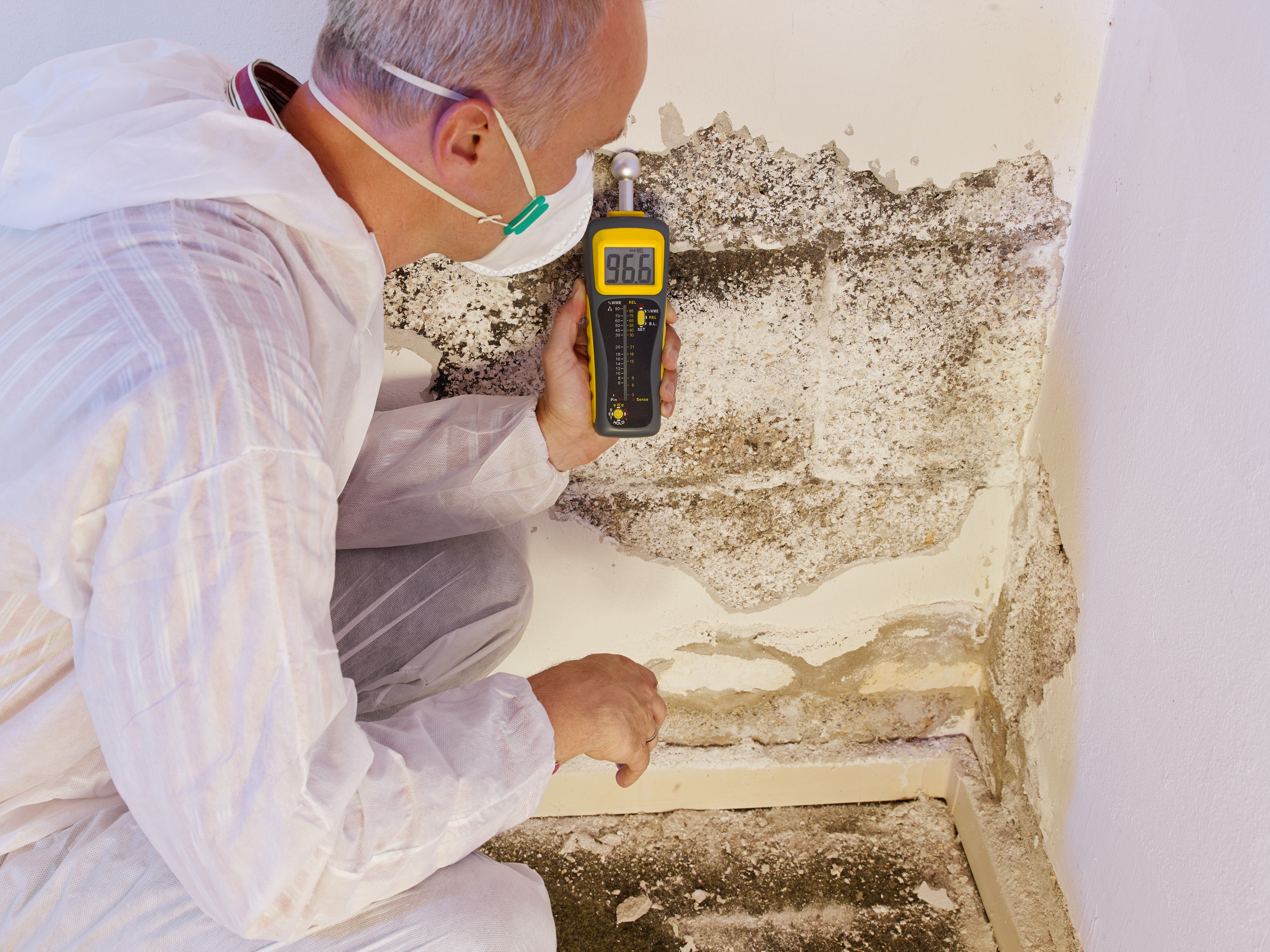 Dangers of Excess Moisture in Your Home