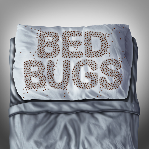 Clint Miller Bed Bug Control